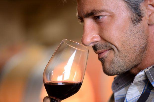 Por que degustar vinhos é uma arte?