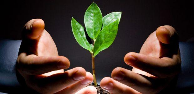 Benefícios da gestão ambiental e de recursos hídricos