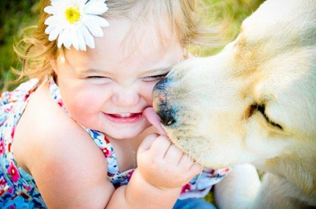 3 maneiras de dar mais amor ao seu pet