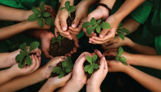 Estratégias de gestão ambiental no século XXI