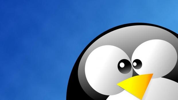 Linux e o desenvolvimento profissional