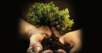 curso de pr�ticas de sustentabilidade...
