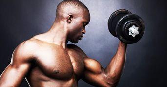 curso de muscula��o do iniciante ao avan�ado...