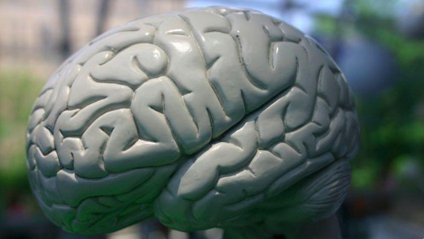 Curso de Introdução à Terapia Cognitivo-Comportamental
