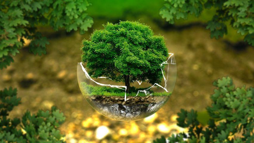 Curso de Introdução ao Licenciamento Ambiental