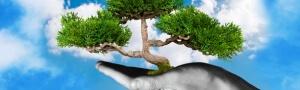 Ilustração - Ambiental