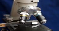 Clique aqui para visitar a página online do Curso de Biologia 1