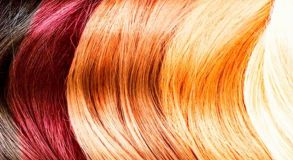 Hair Colorimetry Course