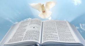 Curso de Introdução ao Novo Testamento