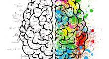 Ilustração - Curso de Neuroeducação na Prática
