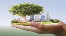 Ilustração - Curso de Gestão Ambiental