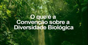 Convenção sobre a Diversidade Biológica